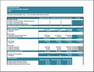 Customer profitability analysis template formal word for Client analysis template