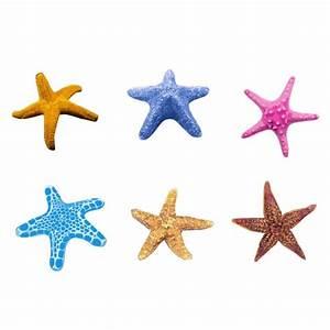 Etoile De Mer Dofus : planche de 6 tatouages toiles de mer color es ~ Medecine-chirurgie-esthetiques.com Avis de Voitures