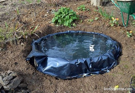 how to build a small pond in your backyard how to build a small pond for the garden lovely greens
