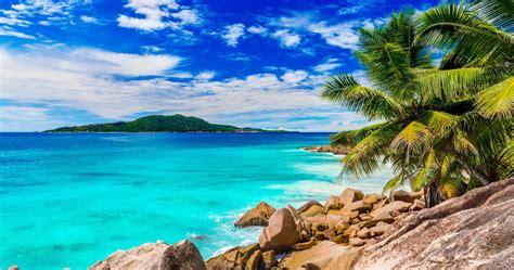 Summer Beach Palm 4k Ultra Hd Wallpaper » High Quality Walls