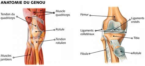 conseils pour la pratique du avec un genou fragile 187 estelle