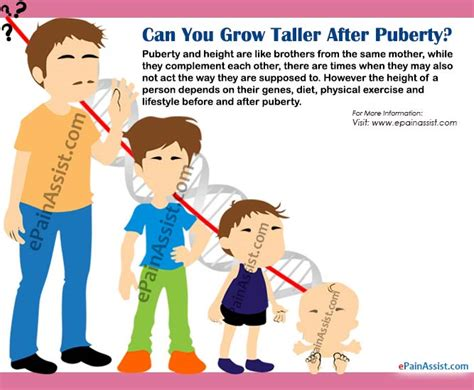 Can You Grow Taller After Puberty?