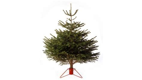 christmas trees recycle for wales