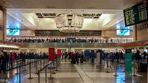 Travel Tip of the Week: How to Avoid Long Security Lines ...
