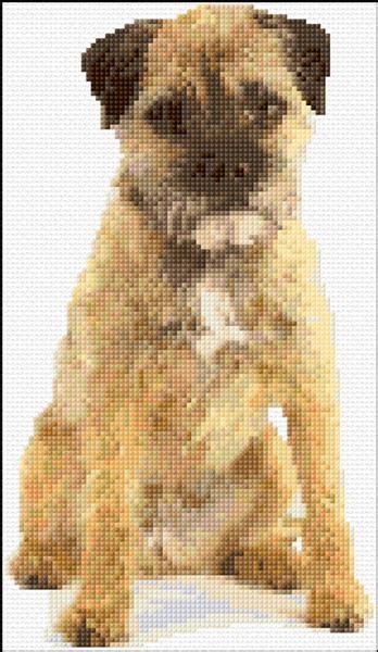 border terrierx stitch  patterns