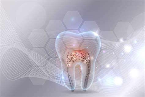 Tooth Enamel That Regrows? Researcher Says Its Possible With A Gel