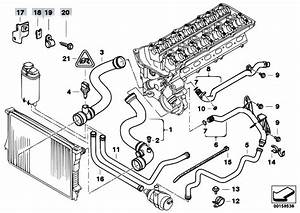 Original Parts For E39 530i M54 Sedan    Engine   Cooling System Water Hoses 2