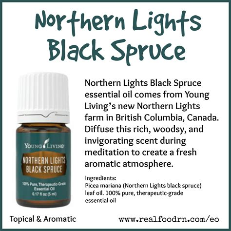 northern lights black spruce essential oil northern lights black spruce essential oil real food rn