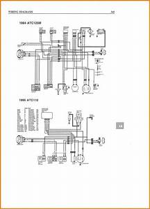 5 Tao 125 Atv Wiring Diagram Cable In In 2020  With Images