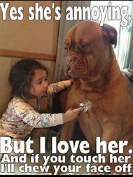 Dogs Funny Quotes