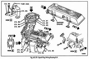 Diagram  Chevy 350 Lt1 Spark Plug Wiring Diagram Full