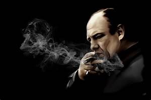 Tony Soprano Digital Art by Laurence Adamson