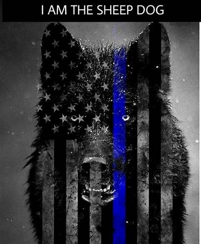 Thin Line Sheepdog Police Wolf Dog Wallpapers