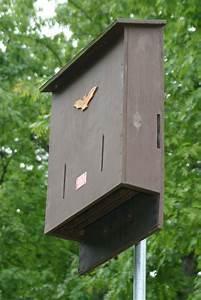Bat House Plans Free Basic Bat House Plans Free Bat House