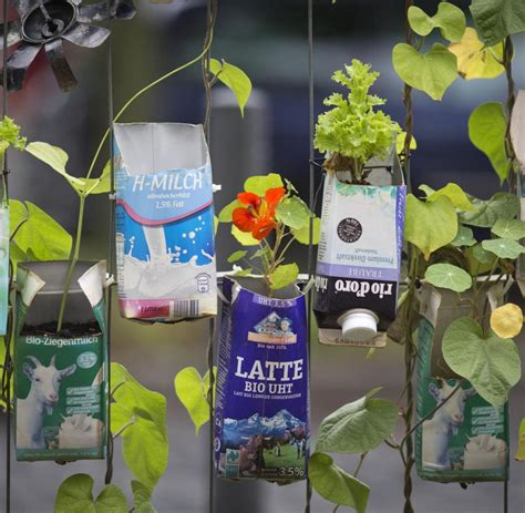 Pflanzen Für Den Balkon by Gardening Balkon
