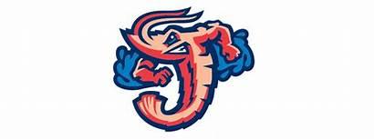 Shrimp Jumbo Jacksonville Sausage Baseball Trip Field