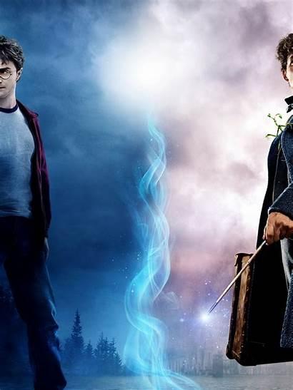 Harry Potter Beasts Fantastic Crimes 4k Ipad