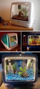 Coole Aquarium Deko : imac aquariums misc items i like in 2018 pinterest ~ Markanthonyermac.com Haus und Dekorationen