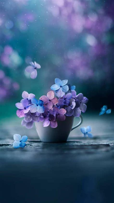 flowers wallpaper  georgekev ad