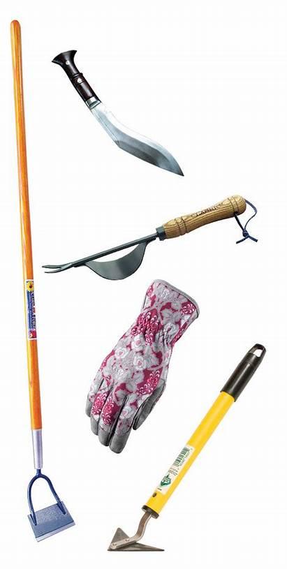Weeding Tools Garden Methods Weeder Herb Maintenance