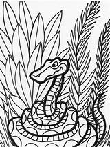 Snake Coloring Pages Animals Jungle Snakes Animal Sheet Print Coloringkids sketch template