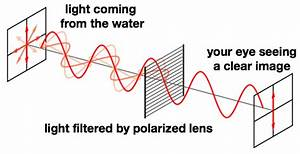 The Difference Between Good And Bad Polarized Sunglasses
