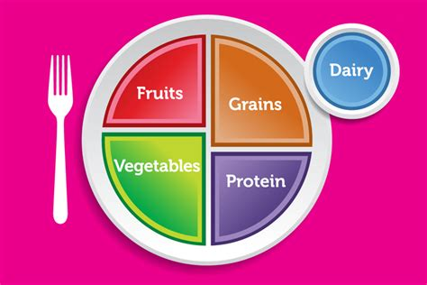 Portion Template by My Plate Replaces Usda S Familiar Food Pyramid Salon