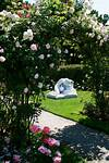 Two Boston Rose Gardens | Landscape Notes rose garden