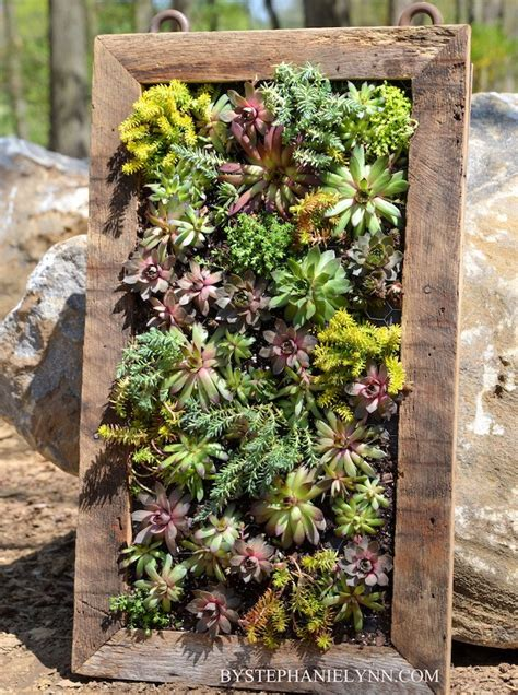 How To Build A Vertical Garden Frame by Succulent Frame Planter Diy Vertical Garden 10 Ways To