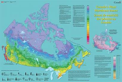 Hardiness Canada Plant Zone Zones Map Frost