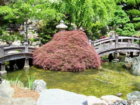 stunning quot japanese garden bridge quot artwork for sale on
