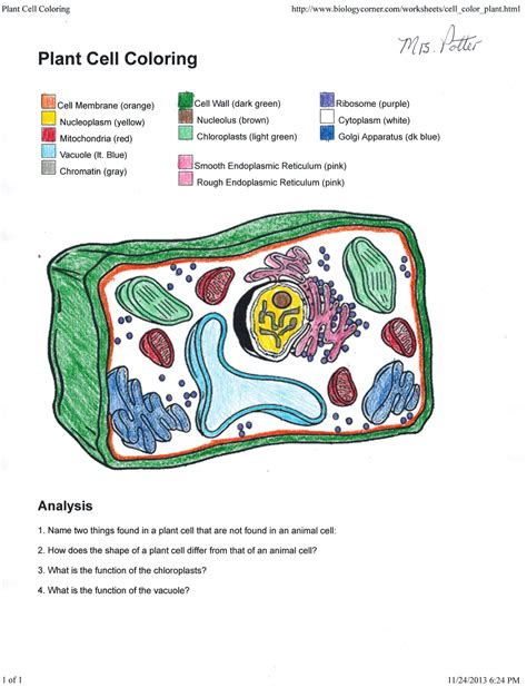 Animal Cell Coloring Key plant cell coloring key 0 on plant cell coloring key