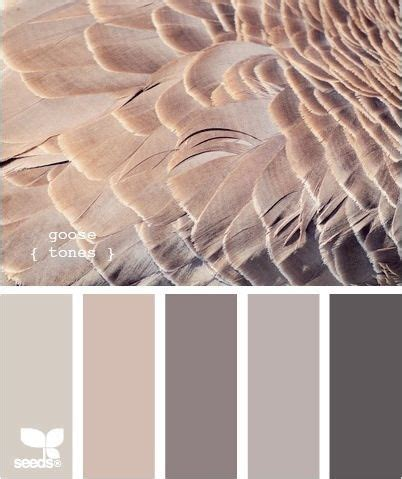 best 25 taupe color schemes ideas on sherwin