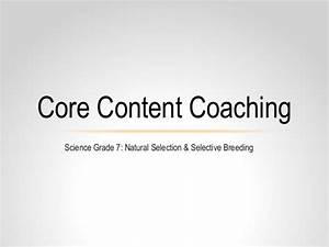 Core Content Coaching Grade 7 Natural Selection  U0026 Selective Breeding
