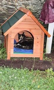 Cabane Pour Chat Exterieur Pas Cher : niche d 39 ext rieur zolia cl o pour chats et chiens niche ~ Farleysfitness.com Idées de Décoration