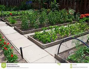 Raised Vegetable Garden Beds Stock Photo - Image: 10157202