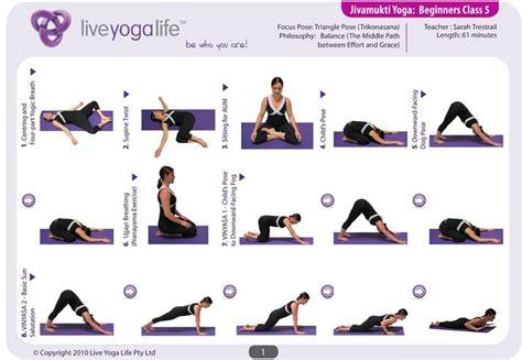 beginner yoga routine   sample yoga routines