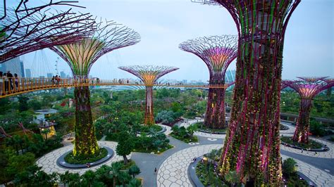 Hotel Near Garden By The Bay Singapore - gardens by the bay in singapore expedia