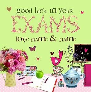 Cupcakes & Wellies - Good Luck With Exams | Funky Pigeon