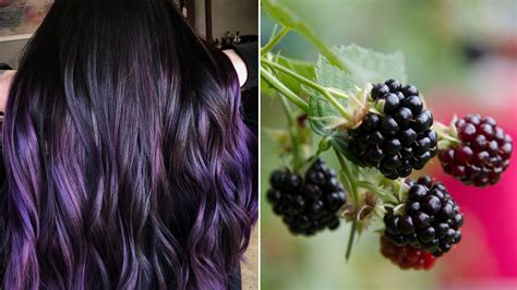 This Blackberry Dye Job Is The Perfect Spring Hair Color
