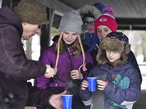 Maple sap was running in Petrifying Springs | Local News ...