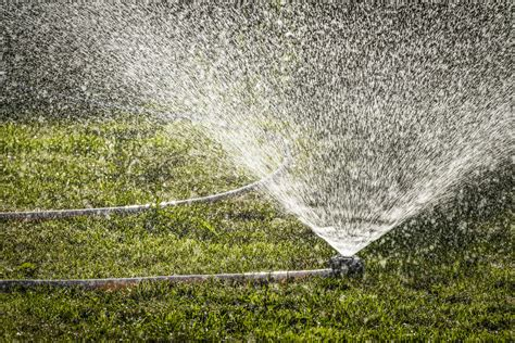 rasen bew 228 ssern 187 wie oft braucht der rasen wasser
