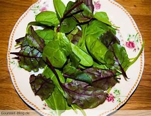 Spinat Als Salat : rosa gebratene entenbrust mit blattsalaten spinatsalat und ziegenfrischk se ~ Orissabook.com Haus und Dekorationen