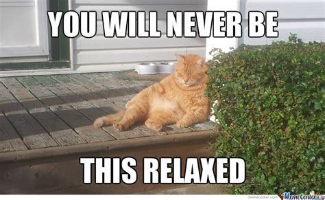 Relax Meme - life right now