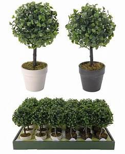 Buchsbaum Im Topf : buchsbaum inkl topf von koopman ~ A.2002-acura-tl-radio.info Haus und Dekorationen