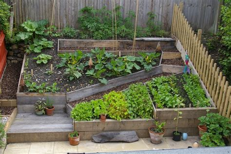 Self Sufficient Backyard - how to create a self sustaining garden revozin