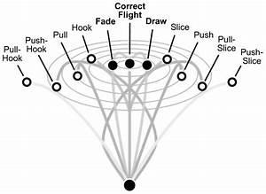 Schematic Representation Of Potential Ball Flights