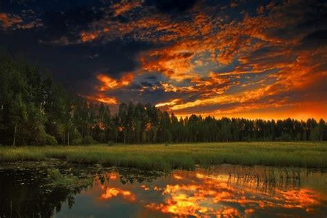 bonito cielo  los colores del amanecer sobre  bosque