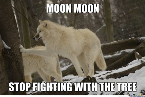 Moon Moon Meme - moon moon by darknessisokxd meme center
