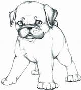 Coloring Pug Pages Dog Realistic Puppy Lab Getdrawings Drawing Print Dogs Cool Funny Ball Playing Outline Printable Personal Sheets Leave sketch template